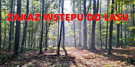 Zakaz wstêpu do lasu